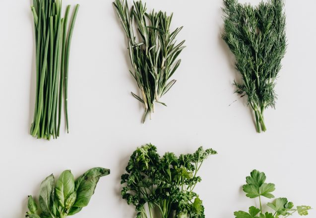 Can Herbs Fight Depression?